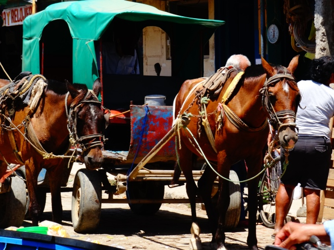 Market Rivas
